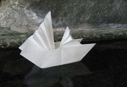 schiff 1