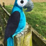 Papagei auf Zaun
