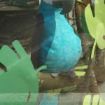 Papagei im Schaufenster