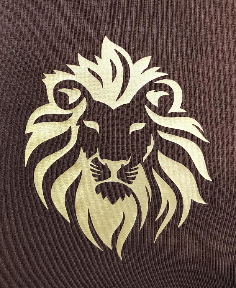 Lionsplott